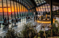 Sky Garden: Too much Concrete for Jungle